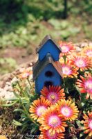 Fairy Bird House by BengalTiger4
