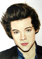 Harry Styles (one direction) by DMartIT