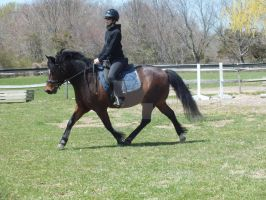 Ozzy and I trotting by WistfulDesigns