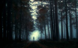 ...dark forest... by BaxiaArt