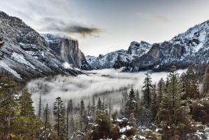 Tunnel view by kaffeemilchkuh