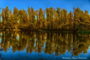 The Old Danube-River. Hungary. HDR. by magyarilaszlo