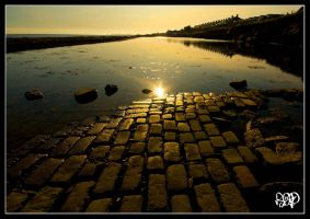 Yellow Brick Road by SnapperRod