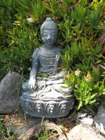 Buddah in the Bushes by Stock-By-Crystal