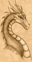 Dragon Drawing by Terrizae