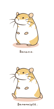 Banana the Hamster by Pawlove-Arts
