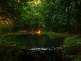 Pond at sunset by lmsgblh