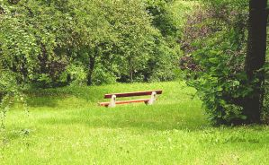 The old red bench by Noncsi28