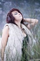 Syberian by belie-photo