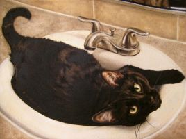 Black Kitty Cloggin up the Sink by OriginalCopyCat1874