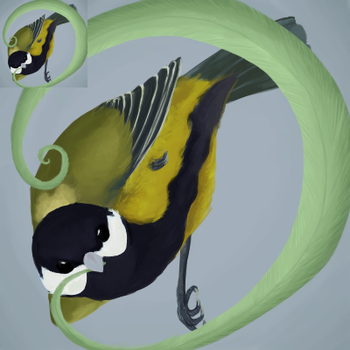 Great Tit icon by Feather-Dancer