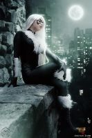 Black Cat - Long night by WhiteLemon
