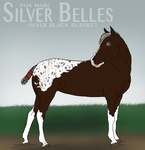 Silver Belles by Roma-Roses-Ranch