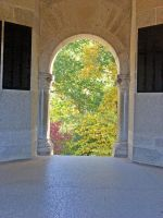 Trees Through Arch by vacuumslayer