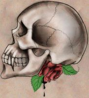 Skull and Rose by stephaniehampton