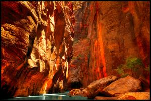 Zion National Park I by kimjew