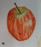 Botanical Illustration- Red Apple by axoupixouhou
