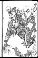 Hulk in my sketchbook And Catwoman by andrecoelhoart
