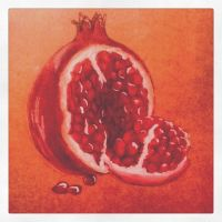 Pomegranate by PetiniBeag