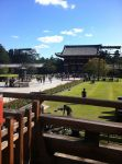 Back of Todaiji by zoellenphotography