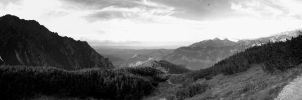 Panorama IX - black and white by Rivenna