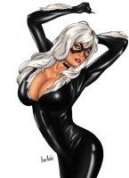 Pin Up Black Cat by Brunomarkes