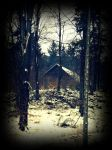 a shed in the dark forest by czmartin
