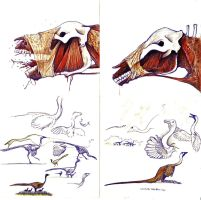 more Ornithomimus and... something else by Hyrotrioskjan