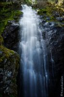 softwater by kayaksailor
