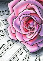 ACEO 2014  - Pink Rose on Music by M-Everham