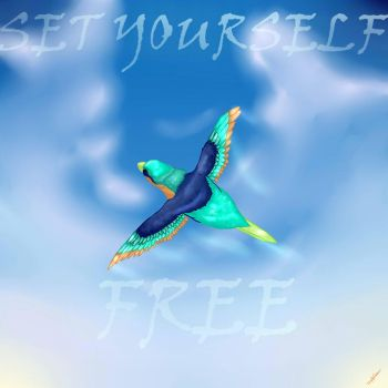 Set Yourself Free by Shikarchi
