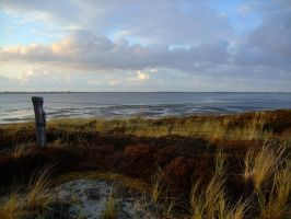 Sylt by mufflifant