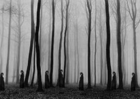 Witches in the wood by FataCorvina