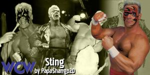 003 - Early 90's Sting WCW by PapaShango20