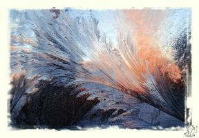 Frosty Feathers by Handie