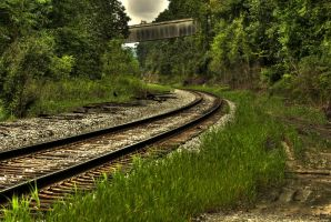 Train Tracks in the Woods by FreeCandy44