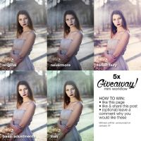 Giveaway Mini workflow for Photoshop by EliseEnchanted