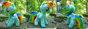 Rainbow Dash plush by dollphinwing