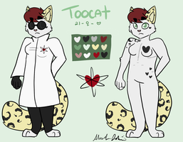 Toocat Update by Negative-Cation