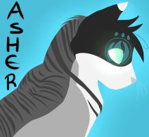 Asher by Evermore-warrior