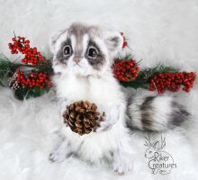 Baby Frost Raccoon ~ Poseable Fantasy Doll by RikerCreatures