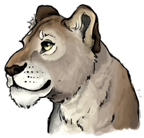 Lioness by painted-flamingo