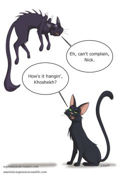 Mysterious Kitties by Expression