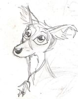 A quick long haired,fennec fox by CosmicZ