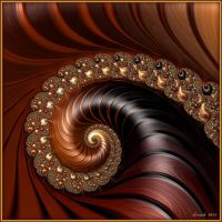 Gold And Mahogany Spiral by 12CArt