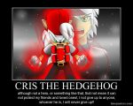 CRIS THE HEDGEHOG by SonicXstar