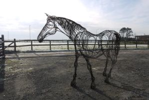 Horse 3 by HubcapCreatures