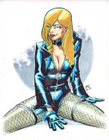 .oO0BlackCanary0Oo. by BluLynes