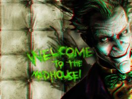 Welcome to the Madhouse 3-D by MVRamsey