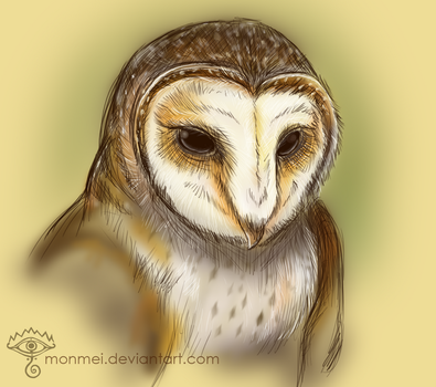 Masked Owl Sketch by Monmei